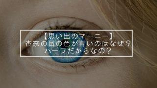 【思い出のマーニー】杏奈の目の色が青いのはなぜ?ハーフだからなの?